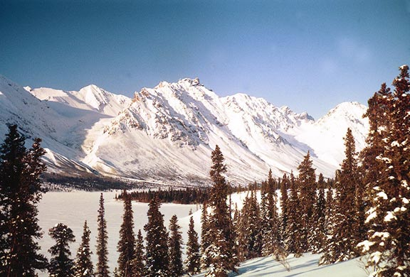 A crisp winter scene of snow covered forest along the edge of a large lake, along the base of high rocky peaks, under a deep blue sky.