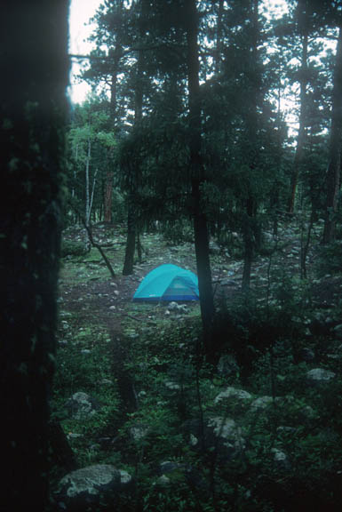 A campsite in near Chicago Creek. THe tent is in a small clearing where rock and green grasses make their home.