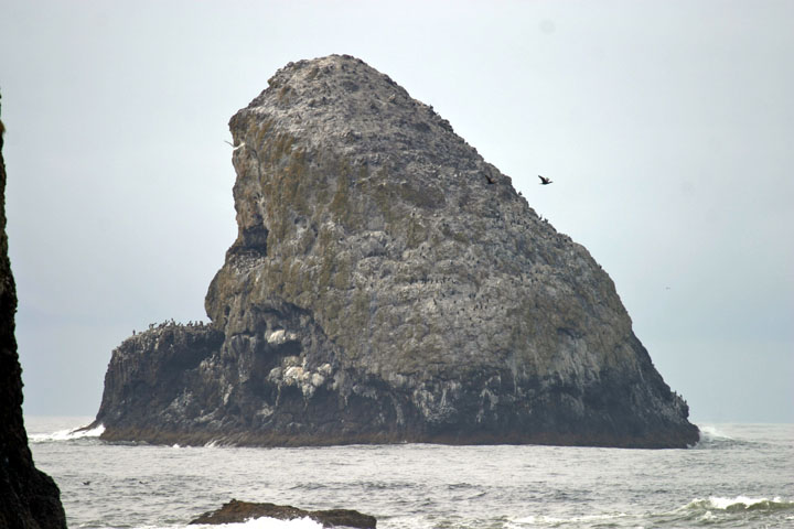 A tall streaked rock island covered in resting seabirds stands high above the water.