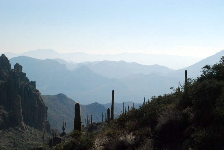 Silhouettes of cacti make up the foreground of this photo while the outlines of mountains peek out from the daytime haze.