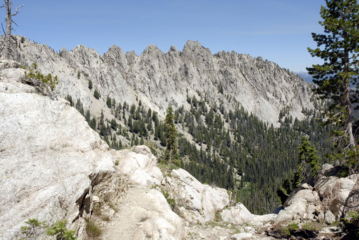 A tall ridge of jagged rock cutting through the forest.