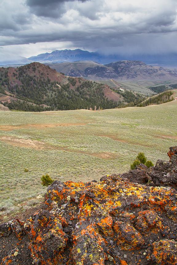 Yellow and orange lichen cover the rocks