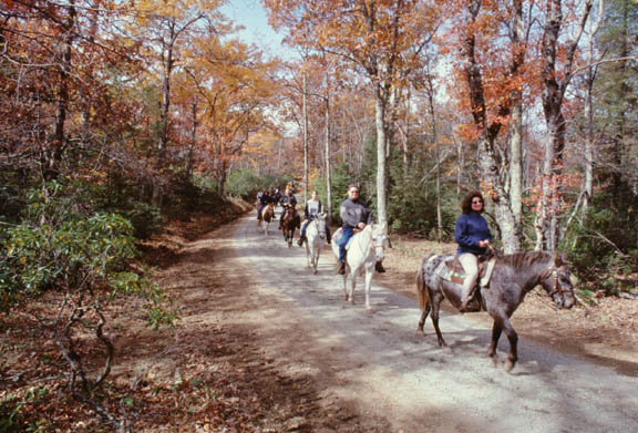 A caravan of people riding horses on a road. Trees in this area are turning red and yellow with the transition of autumn.