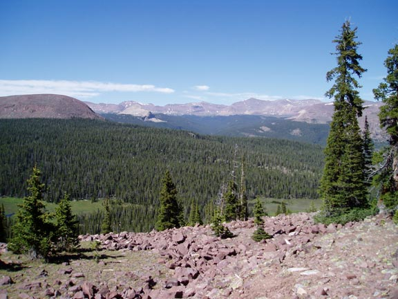 A rocky slope in the foreground leading down to a dense forest valley below, sweeping away to low mountains along the blue horizon.