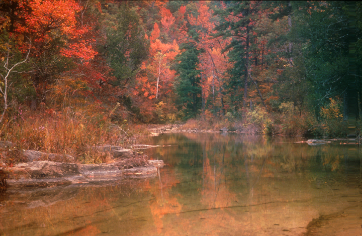 A river runs through a bright autumn wood.