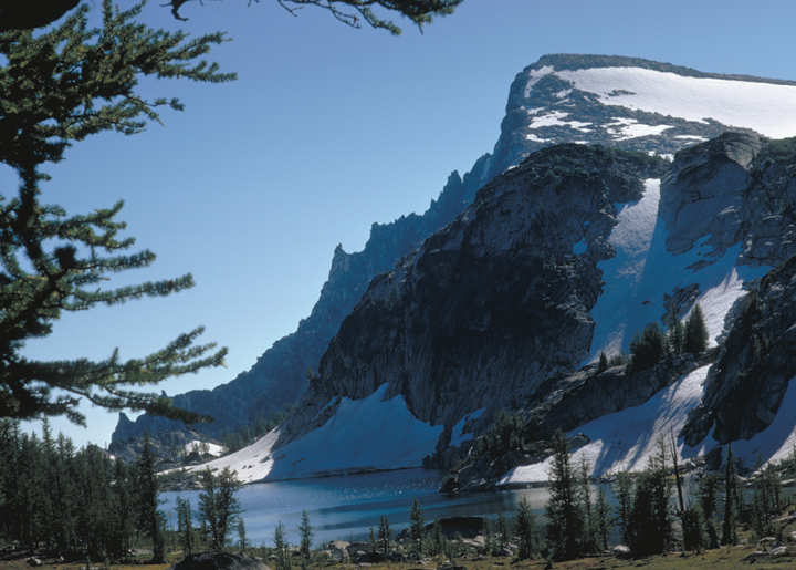 A snow-capped mountain towers over a lake.  Tiny trees dot the foreground, lending scale to this truly awe inspiring vista.