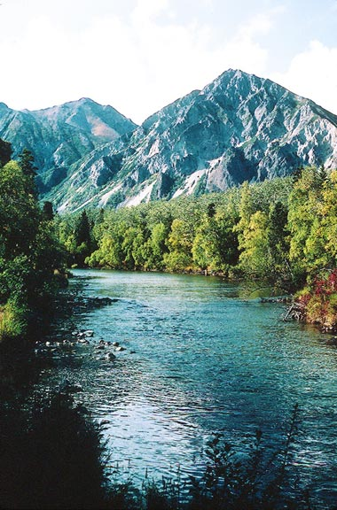 An open river bordered by dense green forest, backed by high rocky mountains in the near distance.