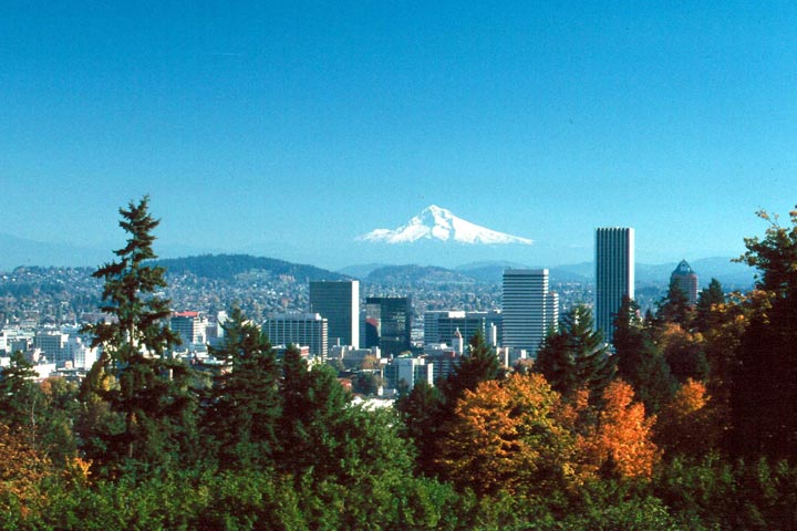 Forest in the foreground leads into skyscrapers surrounded by a large city, and a massive snowcapped peak in the far distance.