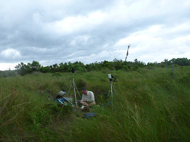 Two scientists use sound monitoring equipment