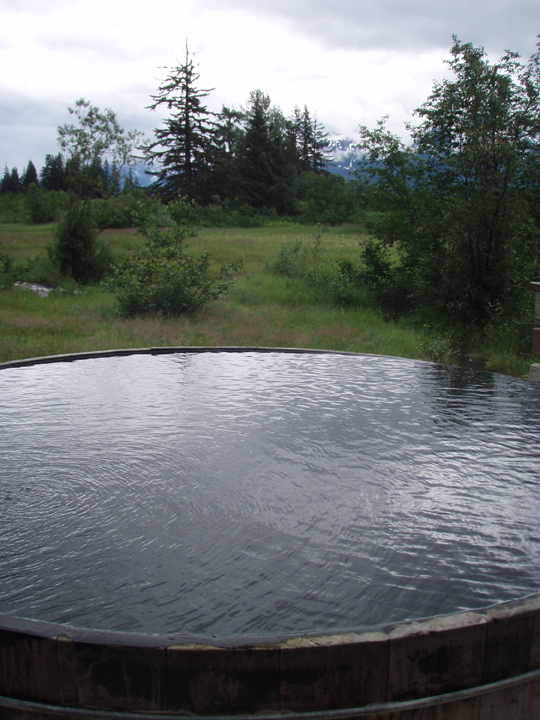 Warm water captured in a large wooden tub creates a hot tub in a remote meadow scattered with trees and bushes.