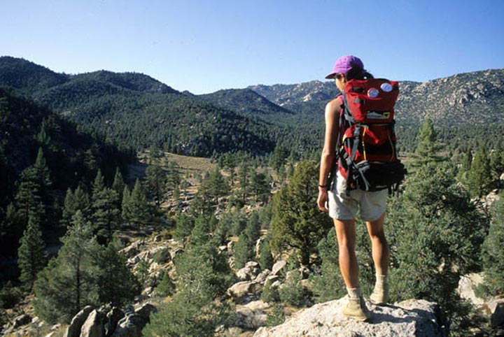 A female hiker stands atop the high area of the South Fork Kern River, peering out at the dense coniferous area.