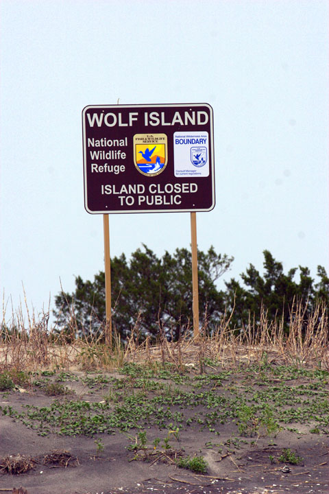 A large brown sign posted along the beach indicating the wilderness boundary and closure to public use.