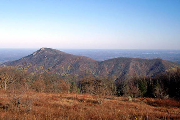A shot of Old Rag Mountain in autumn. The grass of this area is dry and brown while the trees transition from green to red and yellow.