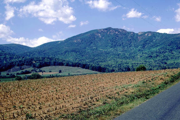 An agricultural field near Old Rag Mountain. The field is barren except for the stunted rows of either harvested or yet to grow produce. The mountain is carpeted with trees while clouds scuttle across the blue sky.