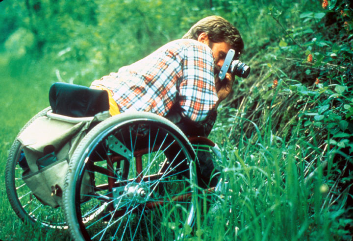 A man in a wheelchair leans over to photograph a flower in the tall grass.