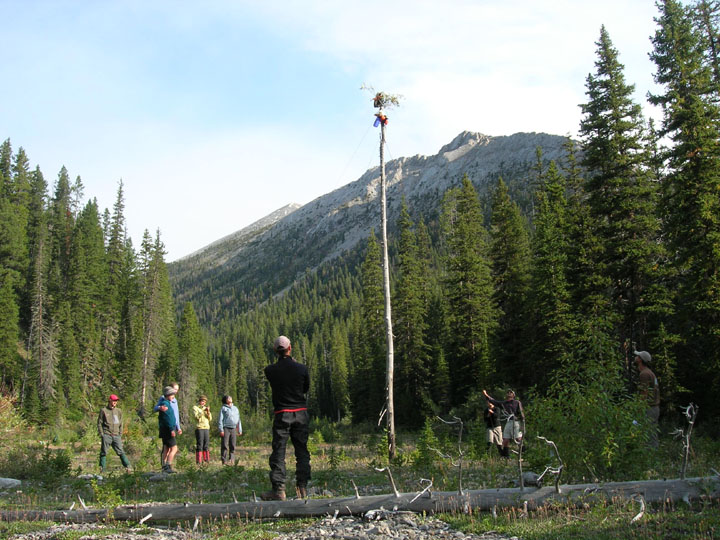 Students look up at a food storage unit on top of a tall, limbless tree during the University of Montana's Wilderness and Civilization Field Studies Fall 2008 Trek.