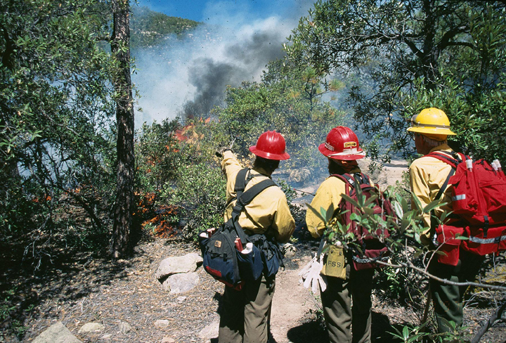 A trio of yellow and red clad firemen look over the brush to flames and smoke from a fire beyond.