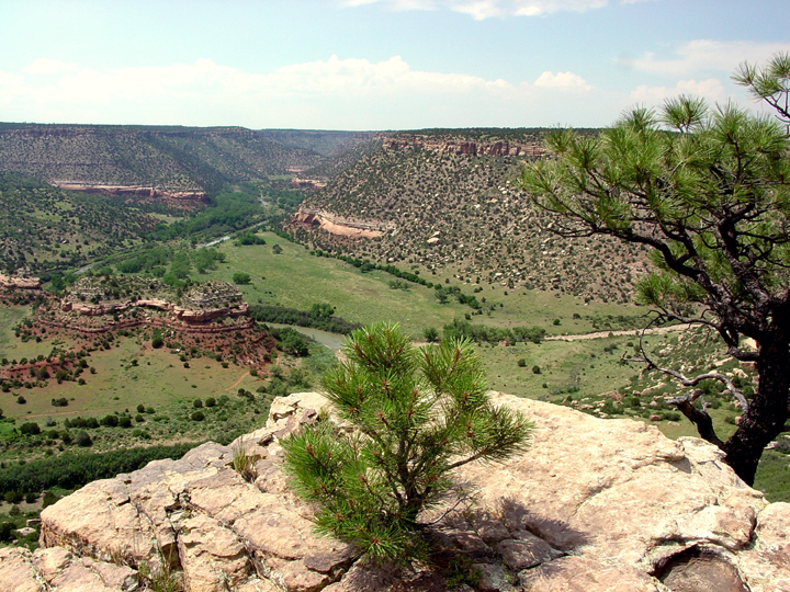 A tan cliff is a paltry edge for the vast valley beyond, dotted with trees and rock formations.