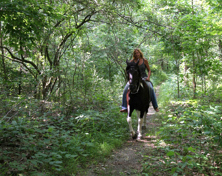 A woman riding a horse follows a trail in the Crab Orchard Wilderness. The surrounding foliage is lush and lively.