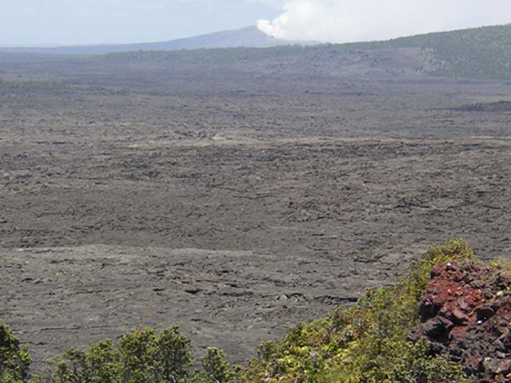 Greenery frames the foreground, beyond which black lava stretches far off into the distance.  Almost out of frame there is a great column of smoke and ash billowing from a distant volcano.