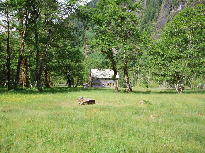 An old, weather worn cabin rests in the shadow of tall trees, all of which is nestled into a green meadow valley.