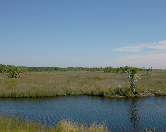 A river dominates the picture, framed out by a grassland beyond.
