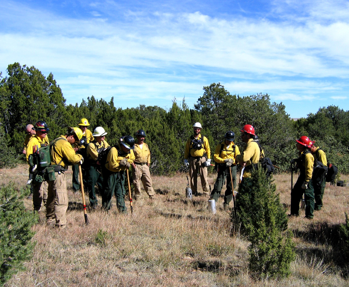 A group of yellow and red clad fire fighters stand in a small cleared area of golden grass.
