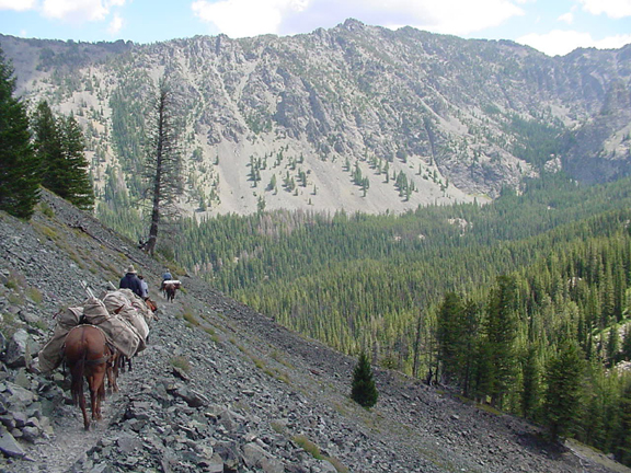A pack string navigates a narrow trail on a steep, rocky hillside overlooking a sunny forested valley.