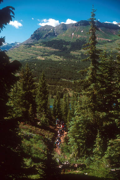 A chain of backpackers treks along a trail in the Weminuche Wildness. The foliage consists of pine trees, deciduous trees, and shrubs and in the distance a mountain reaches toward the bright blue sky.