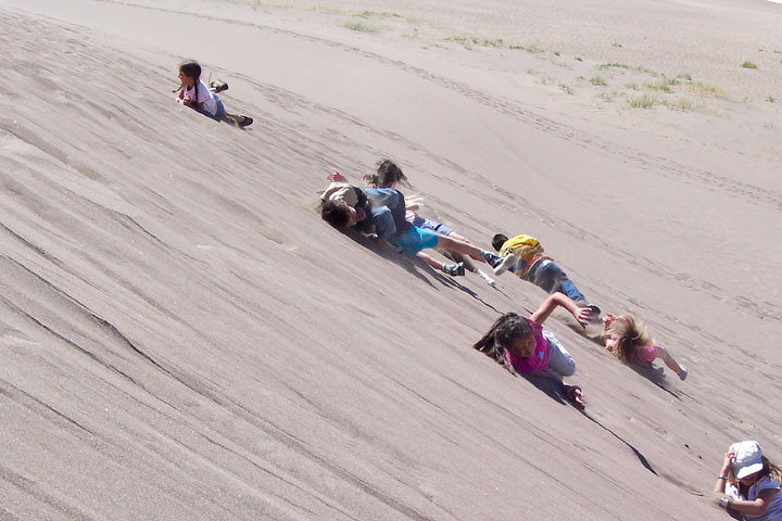A small group of children energetically roll down the face of a large sand dune.