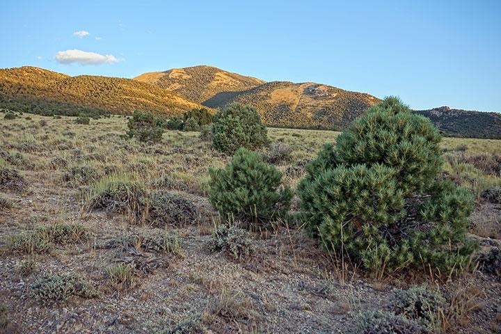 Sunrise over desert hills