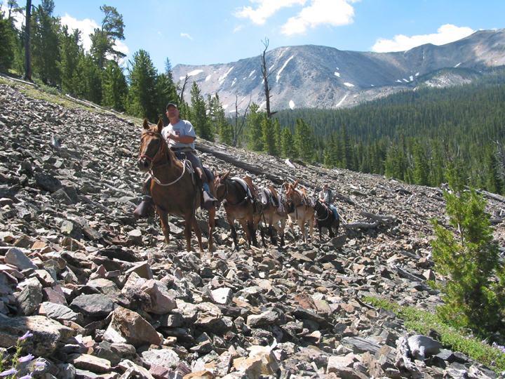 A horseback rider leads a caravan of four horses and another rider through the extremely rocky hillside of the East Fork trail head. The crew is packing in material for bridge repairs.
