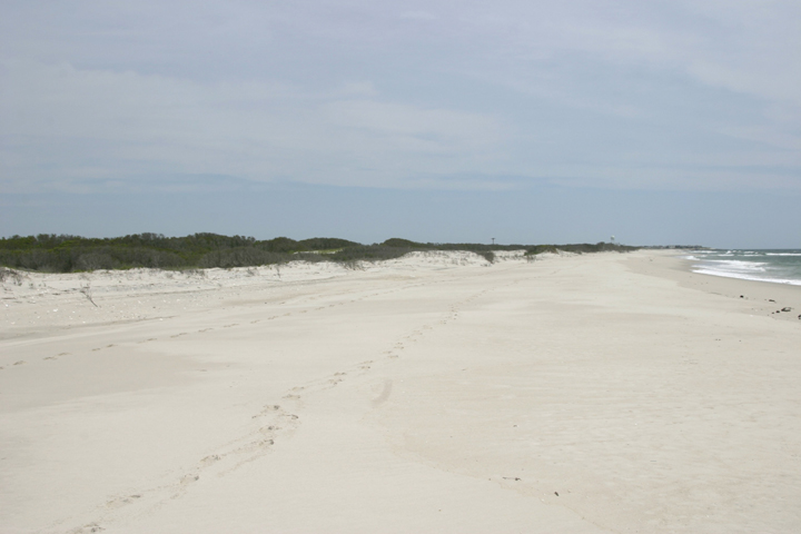 A wide shot of a deserted beach shows clear white sand, a grey surf and far off grasses growing on the dunes.
