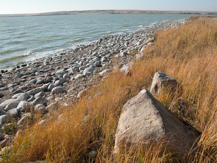 A rocky lakeshore is accented by tall golden grasses and sand colored stones.
