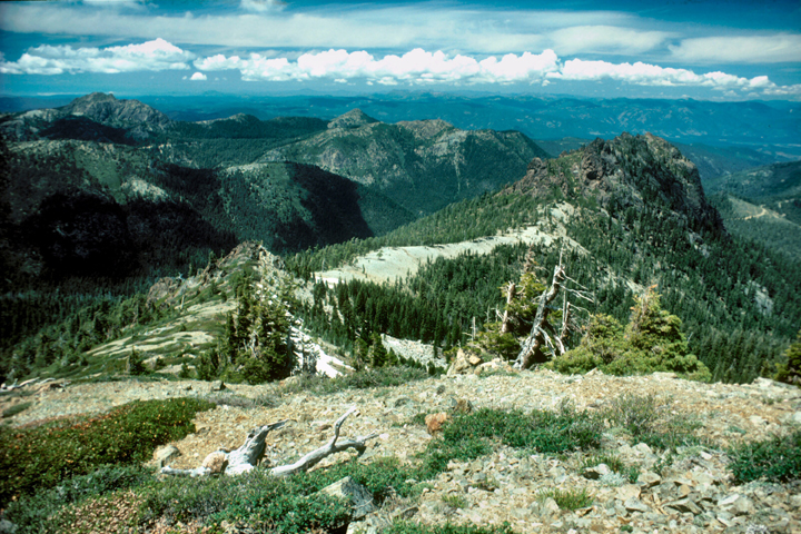 A photo of Black Butte taken from Lookout Mountain. The area consists of rolling hills and dense populations of pine trees.