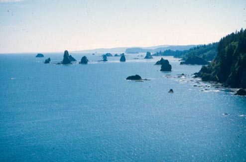 An aerial view of a barren coastline, dozens of small rock pinnacles jutting from the surface of the blue water near the shore.