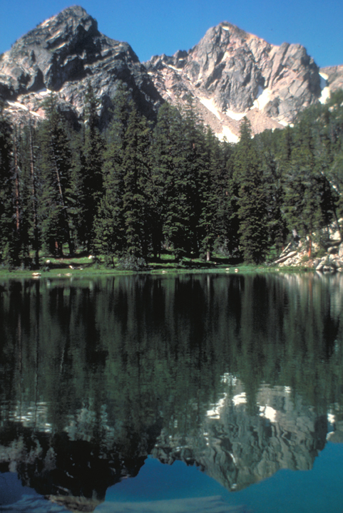 A group of pines stands just in front of a massive peak; the tranquil scene is mirrored in the waters of a lake.