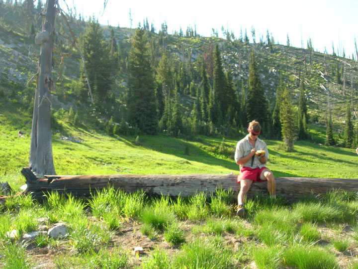 A member of the University of Montana summer 2008 volunteer weed inventory study sits on a fallen tree with a GPS unit while the sun casts rays over the hillside and into the valley where the member sits.