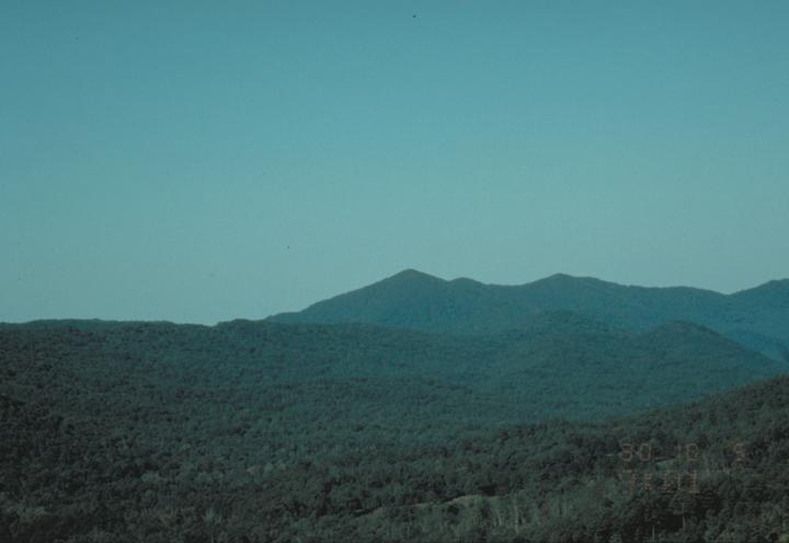 A forest is seen, blue with haze and rolling gently over hill and peak.