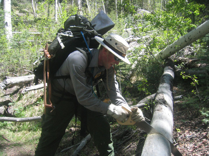 A uniformed ranger uses a handsaw to clear a tree blocking the trail.