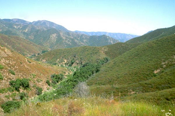The rolling hills of the Cleveland National Forest are carpeted in green foliage and the horizon is white and fades to blue from the edge of the mountain tops.