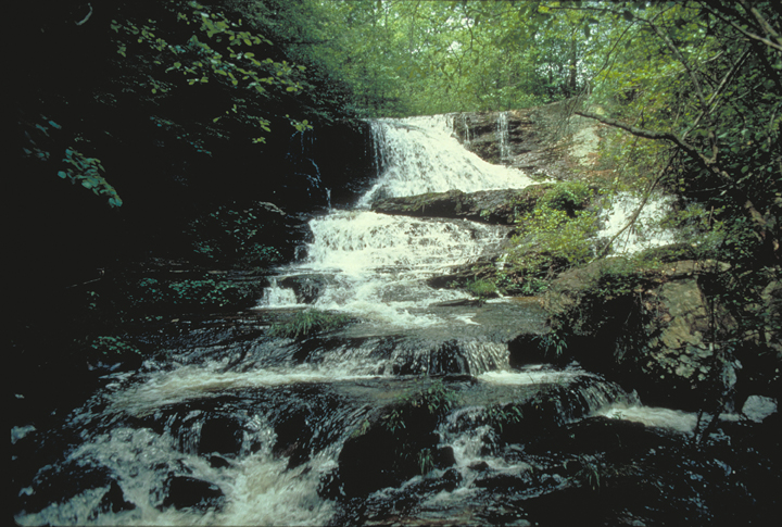 A waterfall pours down over bluffs and small divets, raging through a dark forest.