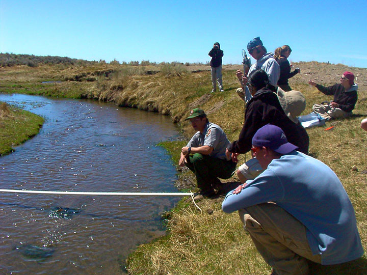 A group of park rangers and college students collect data along a small stream.