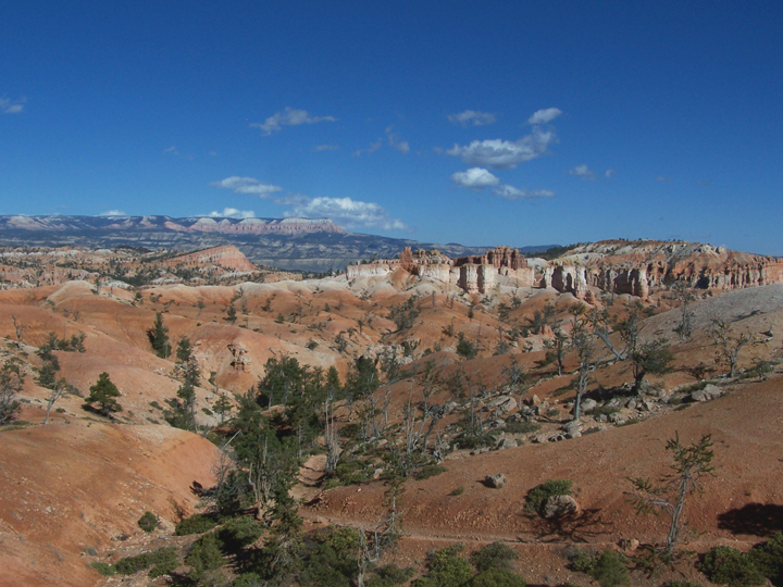 Red valleys and cliff faces can be seen beneath a blue sky; trees and brush dot the hillsides and the gorge bottoms.