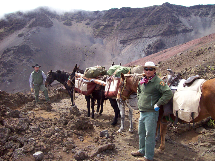Stock use in the crater wilderness is traditional and occurred before it became a park or wilderness.  Unfortunately, it often causes overcrowding, introduces nonnative plant species, and compacts and erodes the trails.