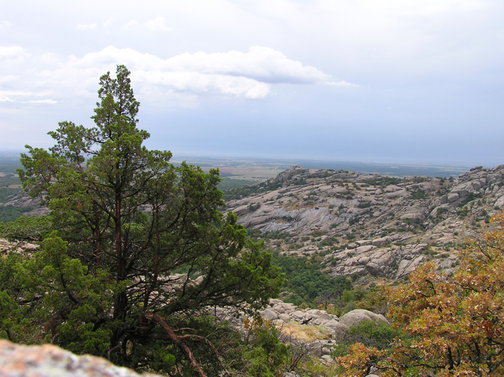 A large tree stands in the foreground of this photo. The landscape consists of trees in autumn transition and hills made of rock.