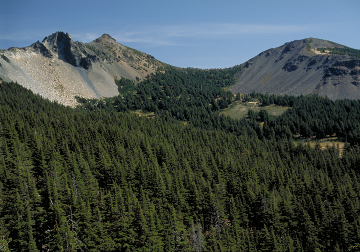 The forest of the valley is painted in all shades of dark green.  The cliff walls are stone gray.