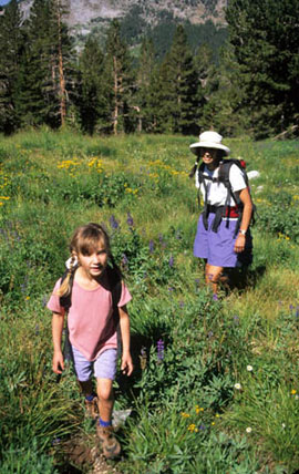 A young woman and a girl walk through a meadow filled with purple and yellow wildflowers on a beautiful sunny day.