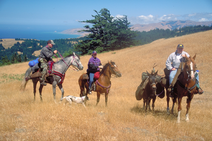 A golden field is traversed by three horses and their riders.  A mule is laden with a dead deer, and a solitary dog weaves in and out of the horses feet.