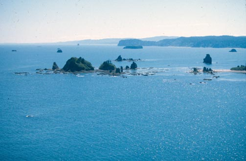 An aerial view of a remote coastline, with small rock islands sprinkled across the blue water.